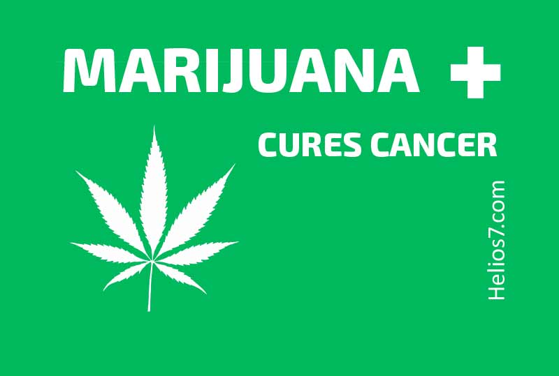 Marijuana Cures Cancer - Helios7